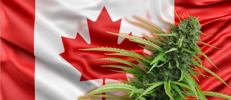 A partir de hoy la mariguana es legal en Canadá