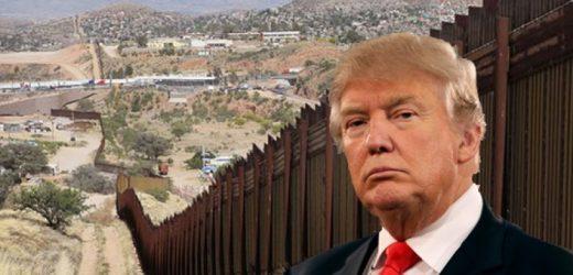 Donald Trump 'disminuye el gasto' de muro con México