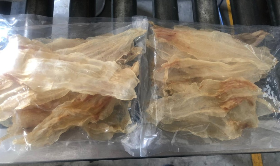 Aseguran buches de totoaba en paquetería de Mérida