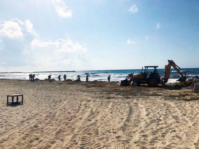 Con maquinaria pesada se retiró sargazo de la Playa Gaviota Azul