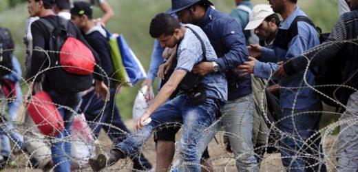 Instituto del migrante ha atendido a cerca de 25 mil deportados
