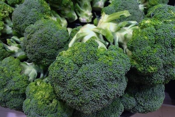 El brócoli podrían detener desarrollo de tumores
