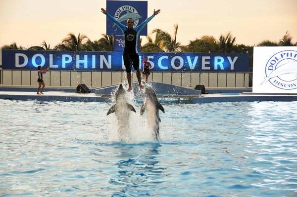 Sigue expansión de Grupo Dolphin en Europa