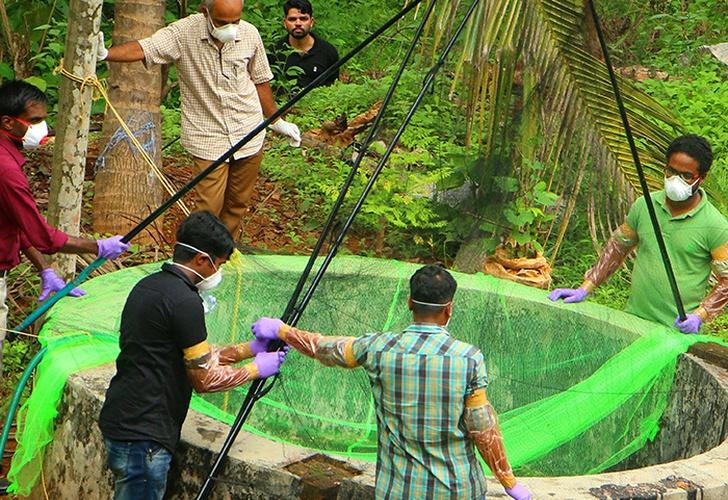 Confirman la reaparición del mortal del virus Nipah en la India