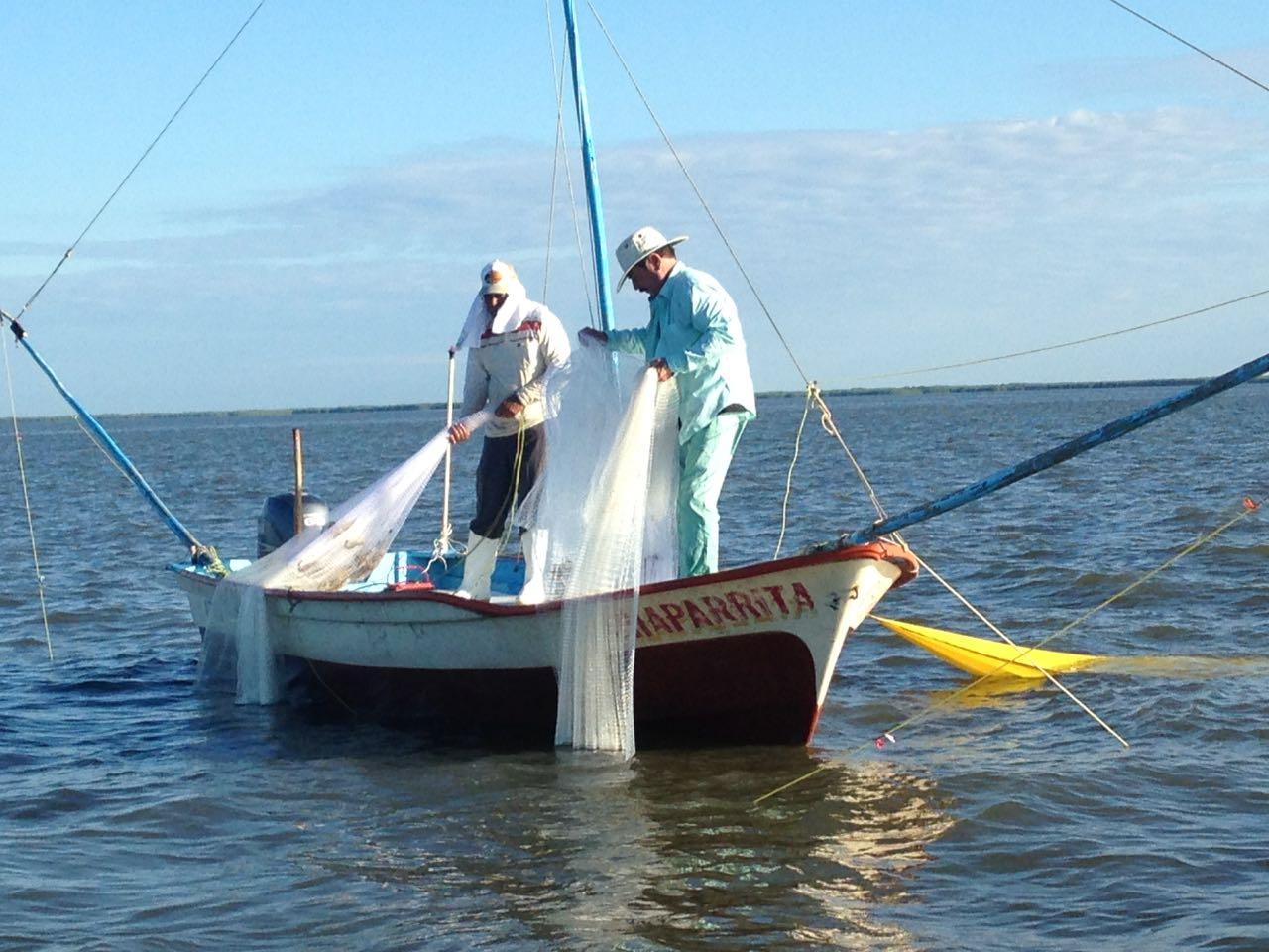Investigan si sargazo afecta la actividad pesquera en Q.Roo