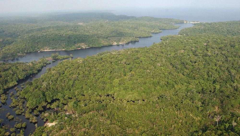 Arde la Amazonia