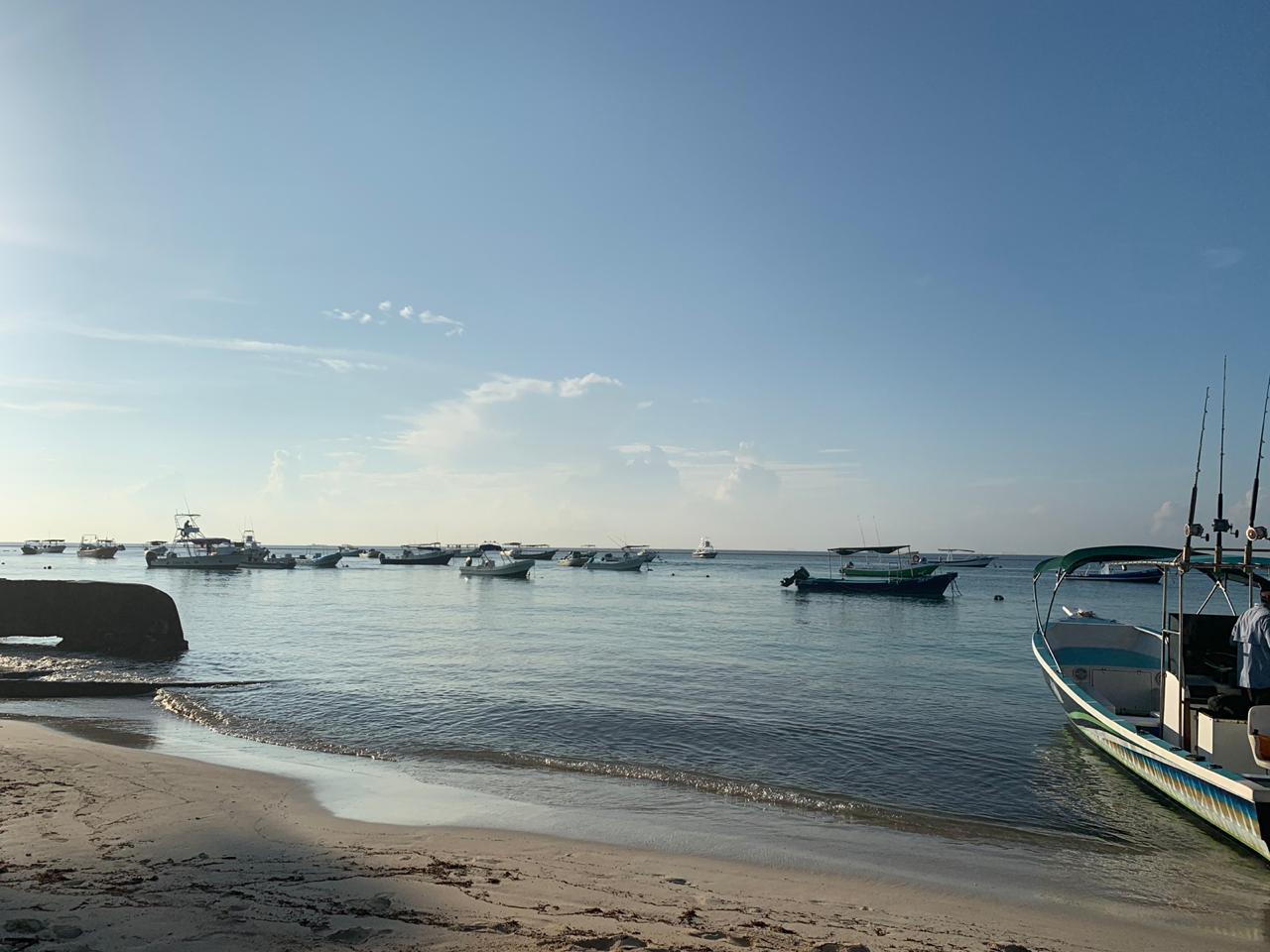 Benditos vientos…limpian playas de sargazo