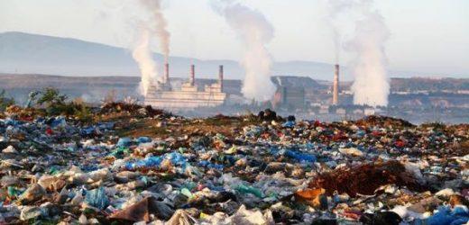 ONU advierte a México en materia ambiental