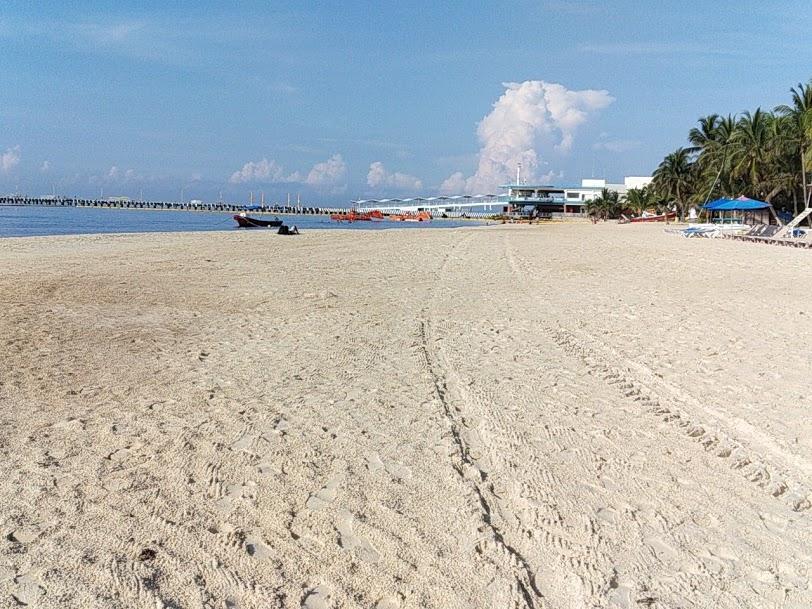 Airbnb Deja Fuera A Cancún Y La Riviera Maya De Su Lista Top