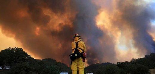 Australia sufre una de las peores contingencias ambientales por incendios