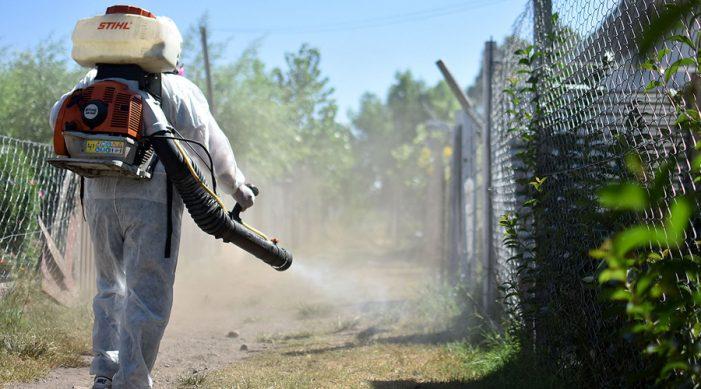 Suman más de 39 mil casos de dengue en México