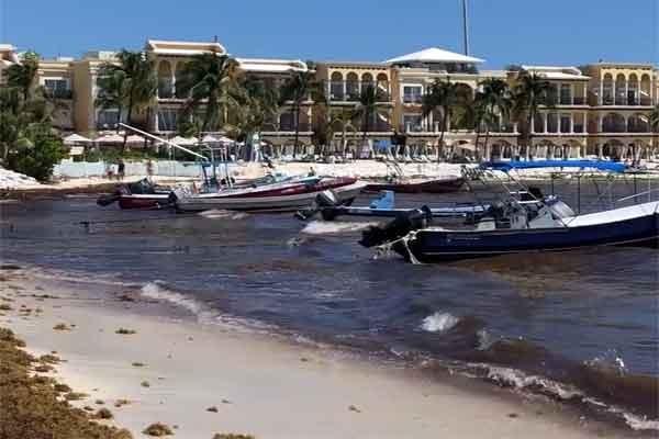 Evaluará Cofepris calidad de agua y arena en El Recodo de Playa del Carmen