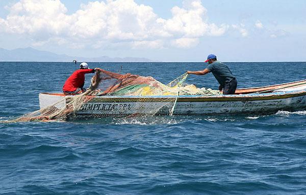 Sector pesquero ha dejado de ganar casi 800 mil pesos por frente frío