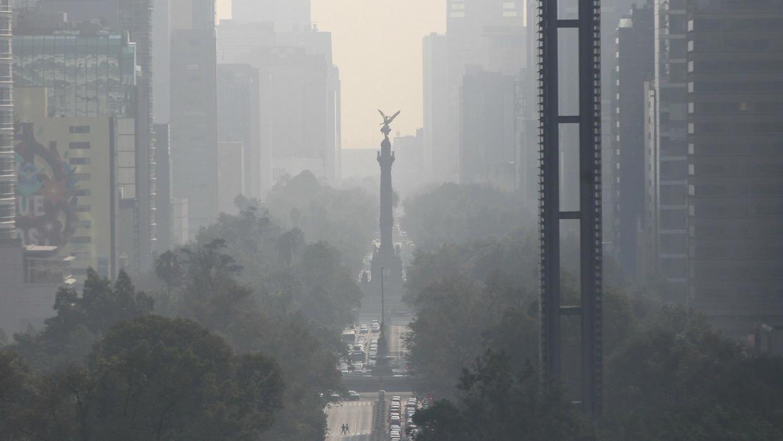Grandes ciudades son el motor de la contaminación mundial y el cambio climático