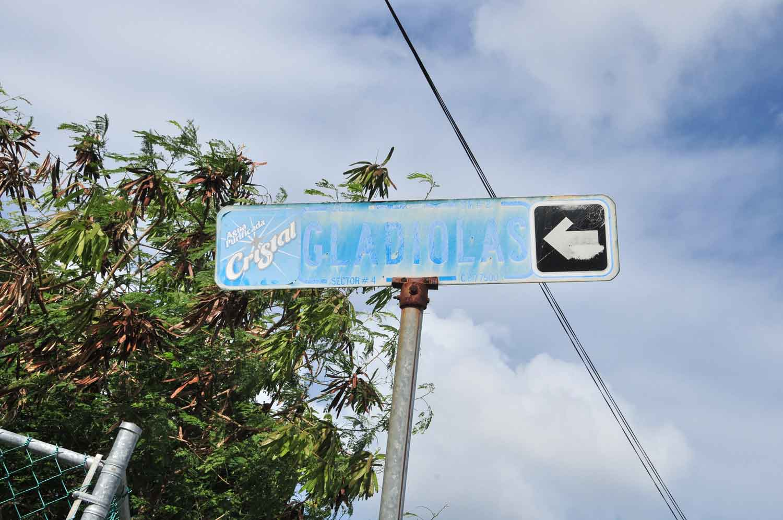 Señalizarán el primer cuadro de la ciudad de Cancún