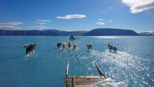 Antártida y Groenlandia pierden hielo seis veces más rápido que en los 90
