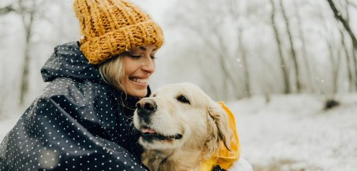 Tips para cuidar la salud de tu perro